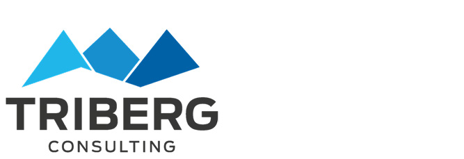 triberg-consulting